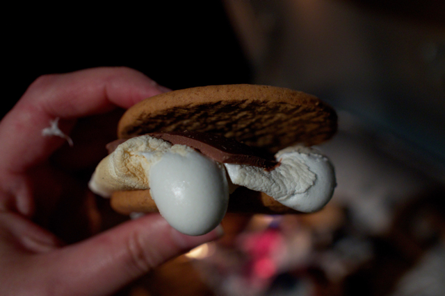 late-night-smores7