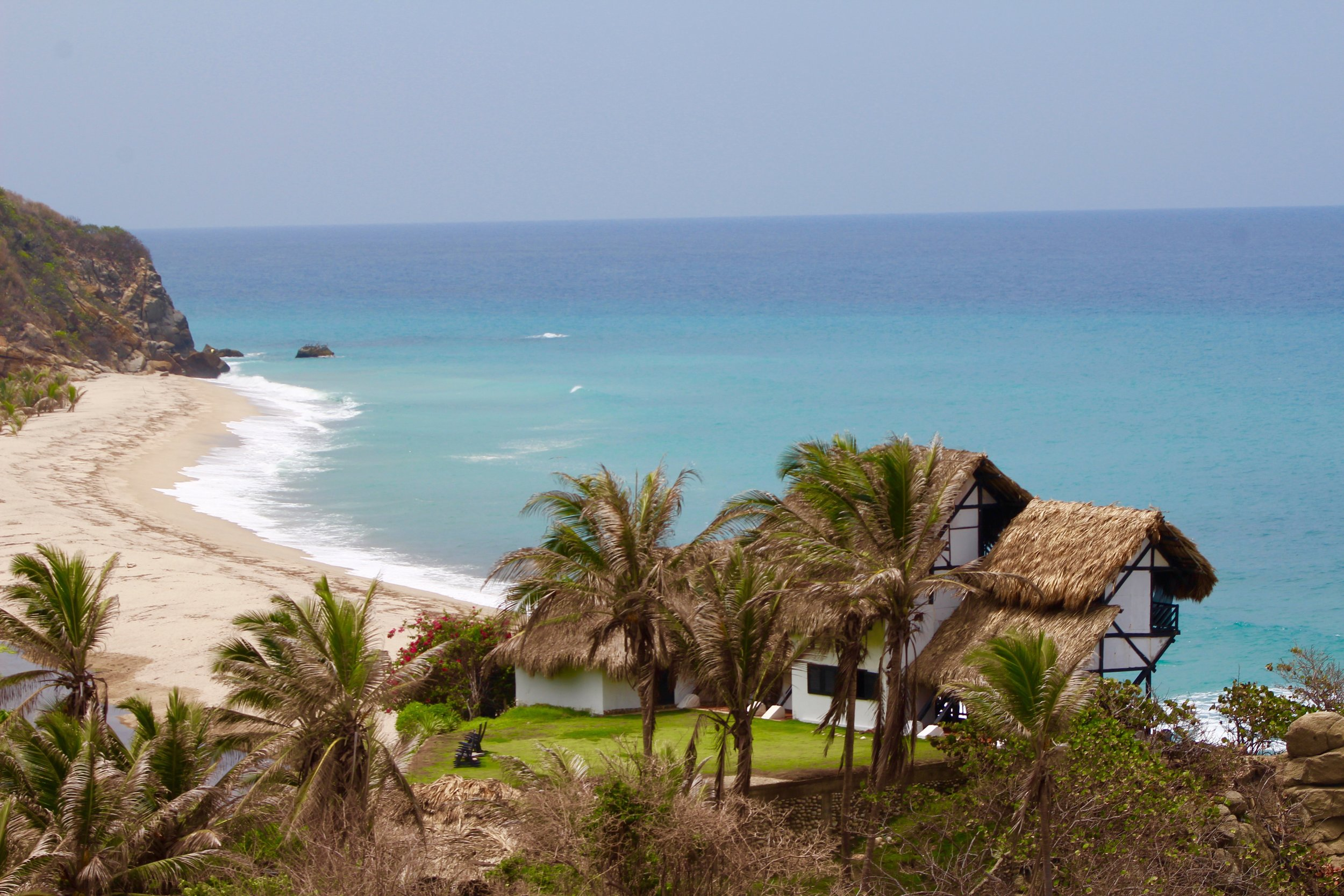 View to part of the finca, from my balcony.
