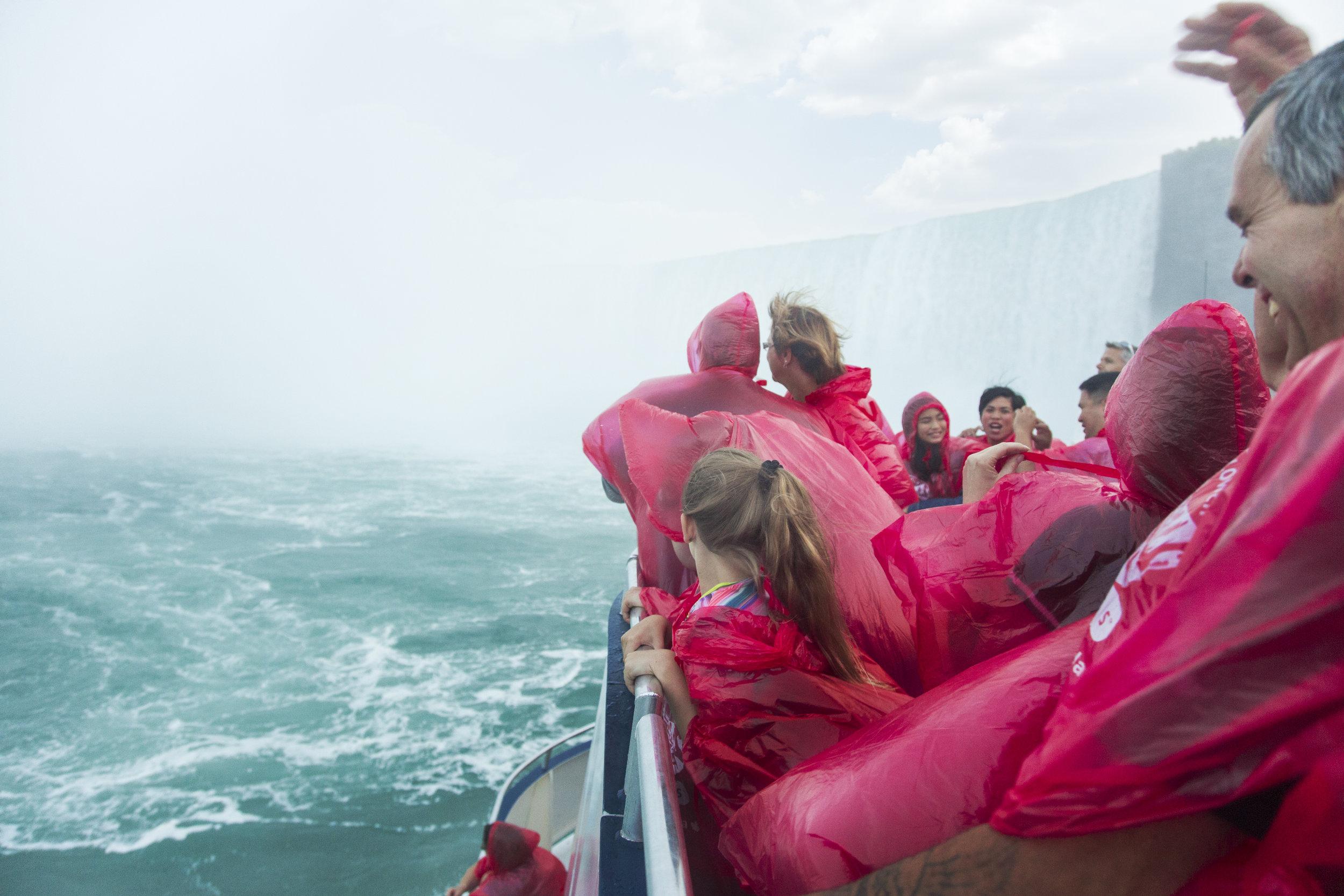 Hornblower Boat Tour