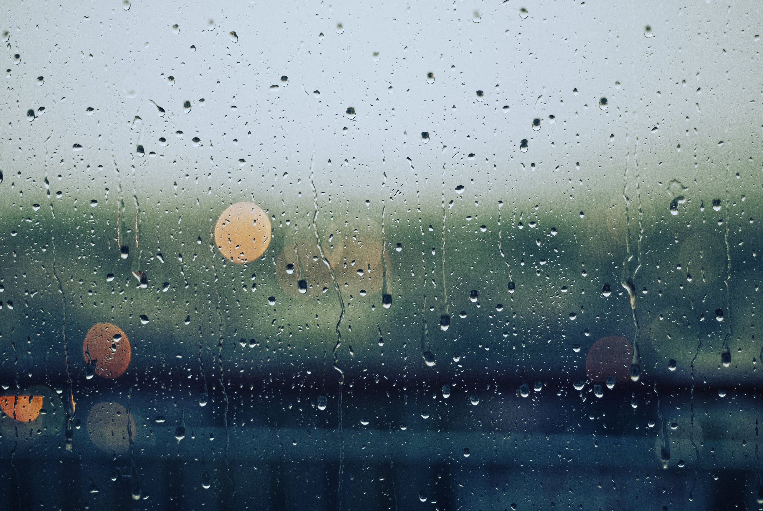 Cancellation due to rain! : ( - You are welcome to brave the elements on your own.Our official Makom Shalom event has been cancelled.
