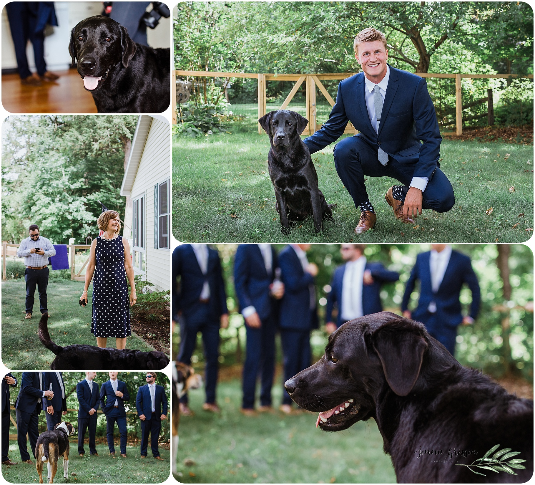 Vermont Wedding Photography With Dog