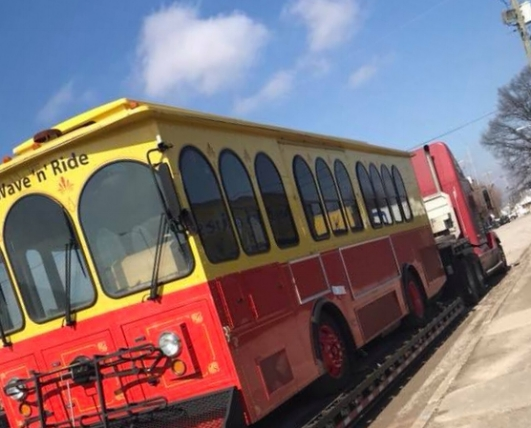 TED TROLLEY