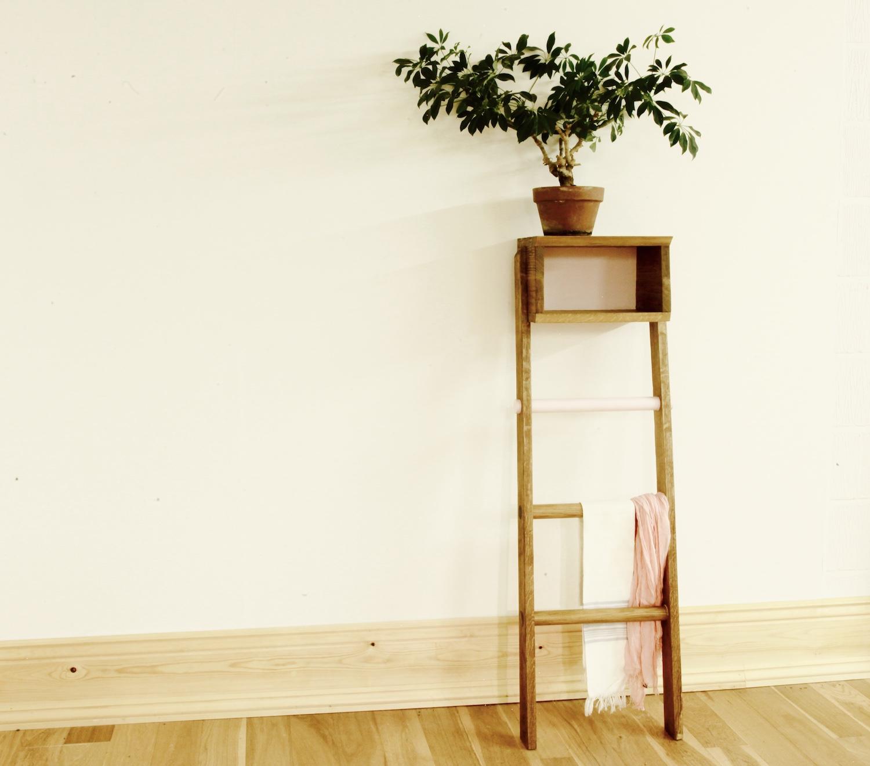 shelf_ladder_1_web.jpg