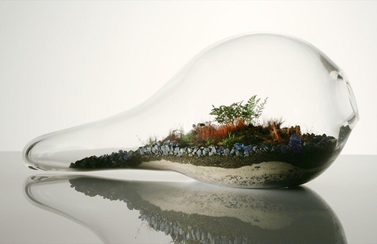"Terrariums Let Anyone Create a ""Perfect World"" in Their Own Apartment"