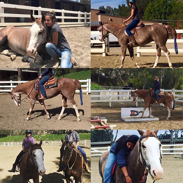 Offered for (on-site) Lease 3 days a week (lessons included if wanted) KID SAFE!!! Red Headed Cowboy AKA Boomer is a 15.3 hand, 13 year old APHA sorrel overo gelding. This horse has a huge heart and will do whatever you ask of him. He would be great for a first time lessor (youth or adult) wanting to learn to ride or an experienced rider wanting to do their thing. He can be ridden English or western. He is offered for half lease 3 days a week. His lease includes 2 lessons a week (if wanted), and all tack/grooming supplies. So if you have nothing of your own no need to rush into getting it as it is ALL provided. This horse has great ground manners and a smooth ride. He has more whoa than go which makes him super safe! Please pm me on fb or contact me at (949)292-6599 located in San Juan Capistrano Ca at a public facility until December. Then he will be moving with the trainer to a private facility in a Newport Beach that has hot/cold water, fly misters, round pen, pasture, trails through the back bay, and private arena.  Video:https://m.youtube.com/watch?v=G_lh6bdDRac  #kbperformancehorses #western #english #forlease #lease #fun #summer #paint #painthorse #apha #americanpainthorse #newportbeach #paint #overo #trail #horsemanship #westernpleasure #horses #western #english #kidsafe #americanpainthorseassociation #horses #horse #goodboy