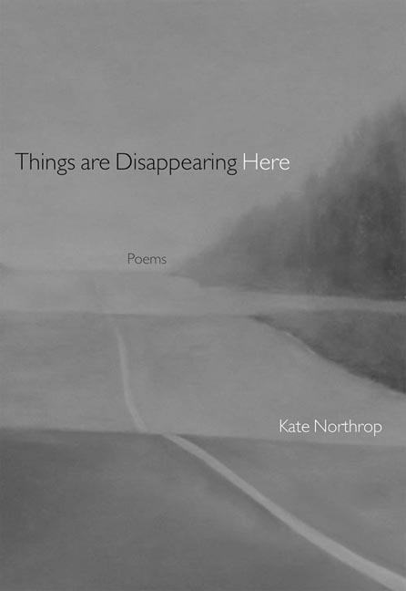 things are disappearing cover.jpg