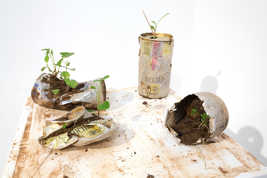 Beer can archaeology , cans found along Monocacy River