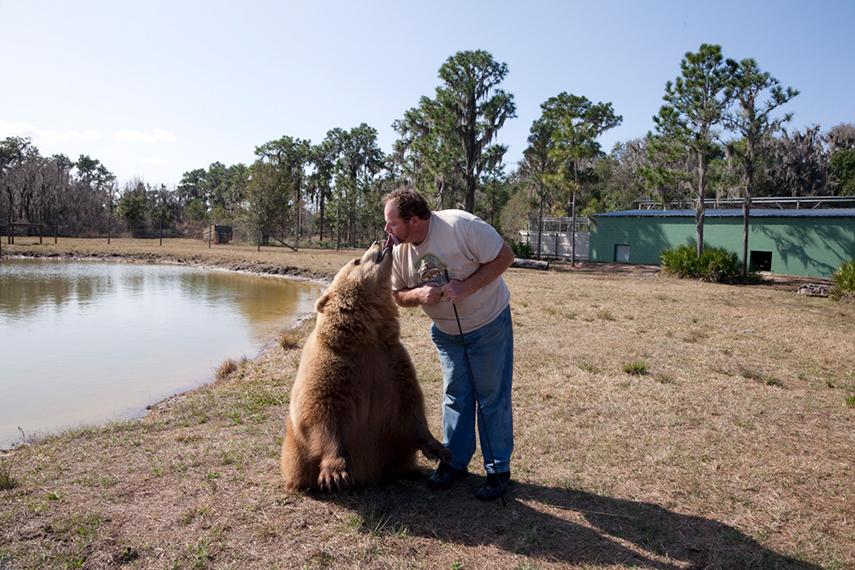 Bear Kiss. Myakka City, FL