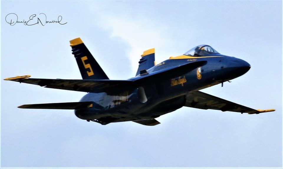 Blue Angel-1.jpg