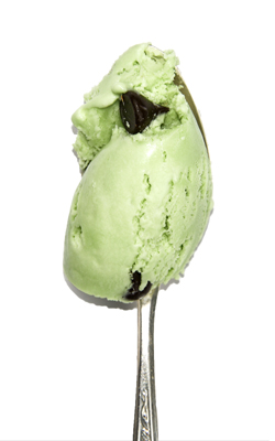 Fresh mint ice cream with dark chocolate chips