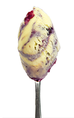 Blueberry compote-swirl ice cream
