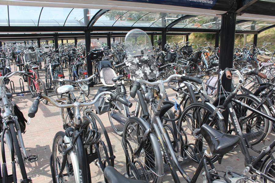 utrecht_bus_stop_bikes.jpg