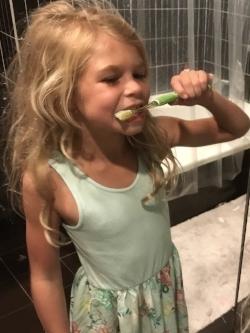 Sawtelle girl2 brushing.jpg