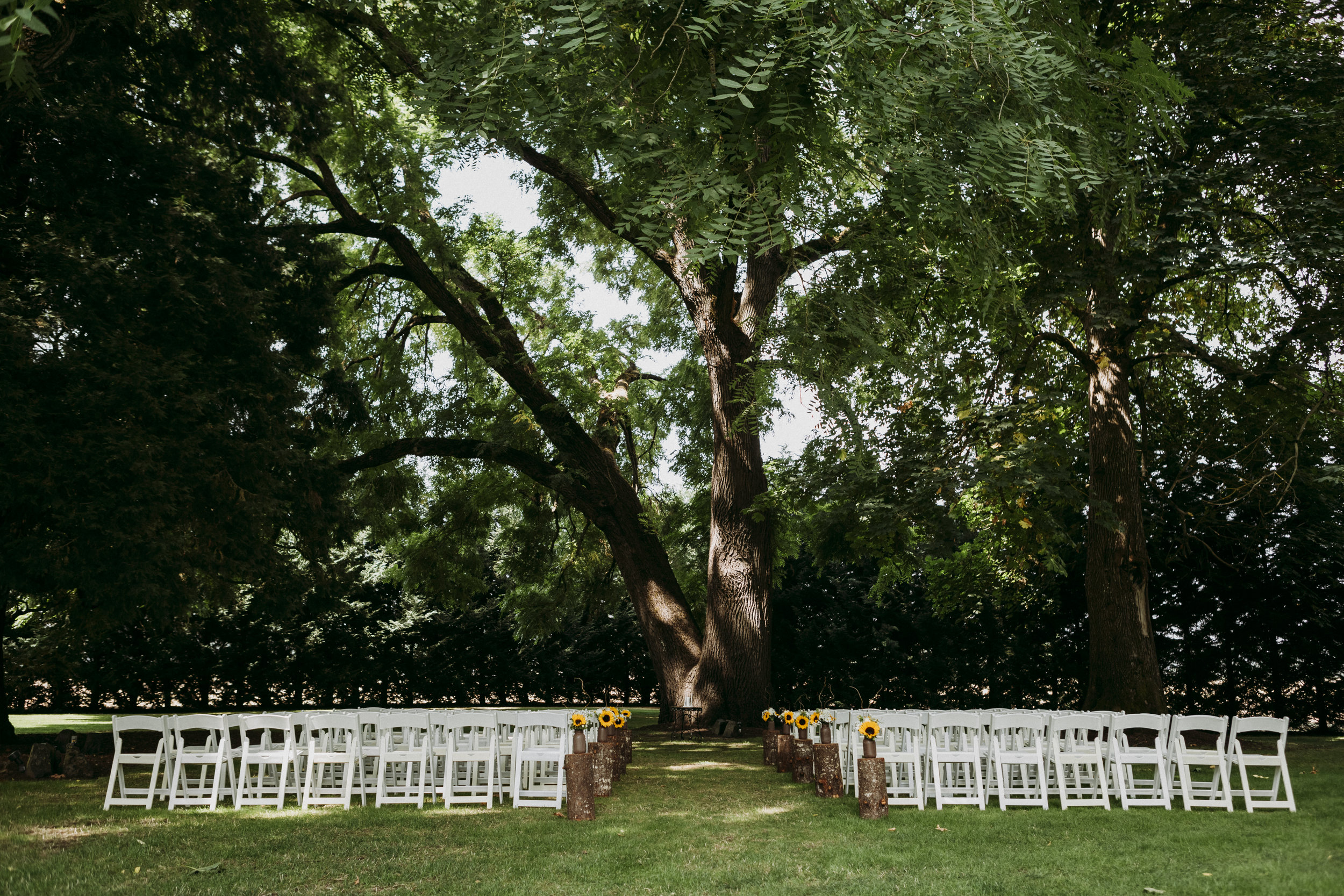 Julie-Rob-Wedding54.jpg