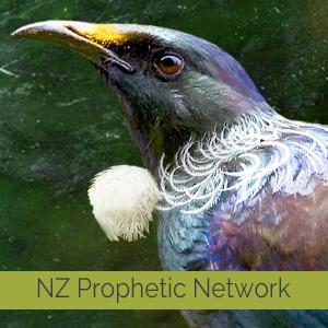 2019-NZPN-box.jpg