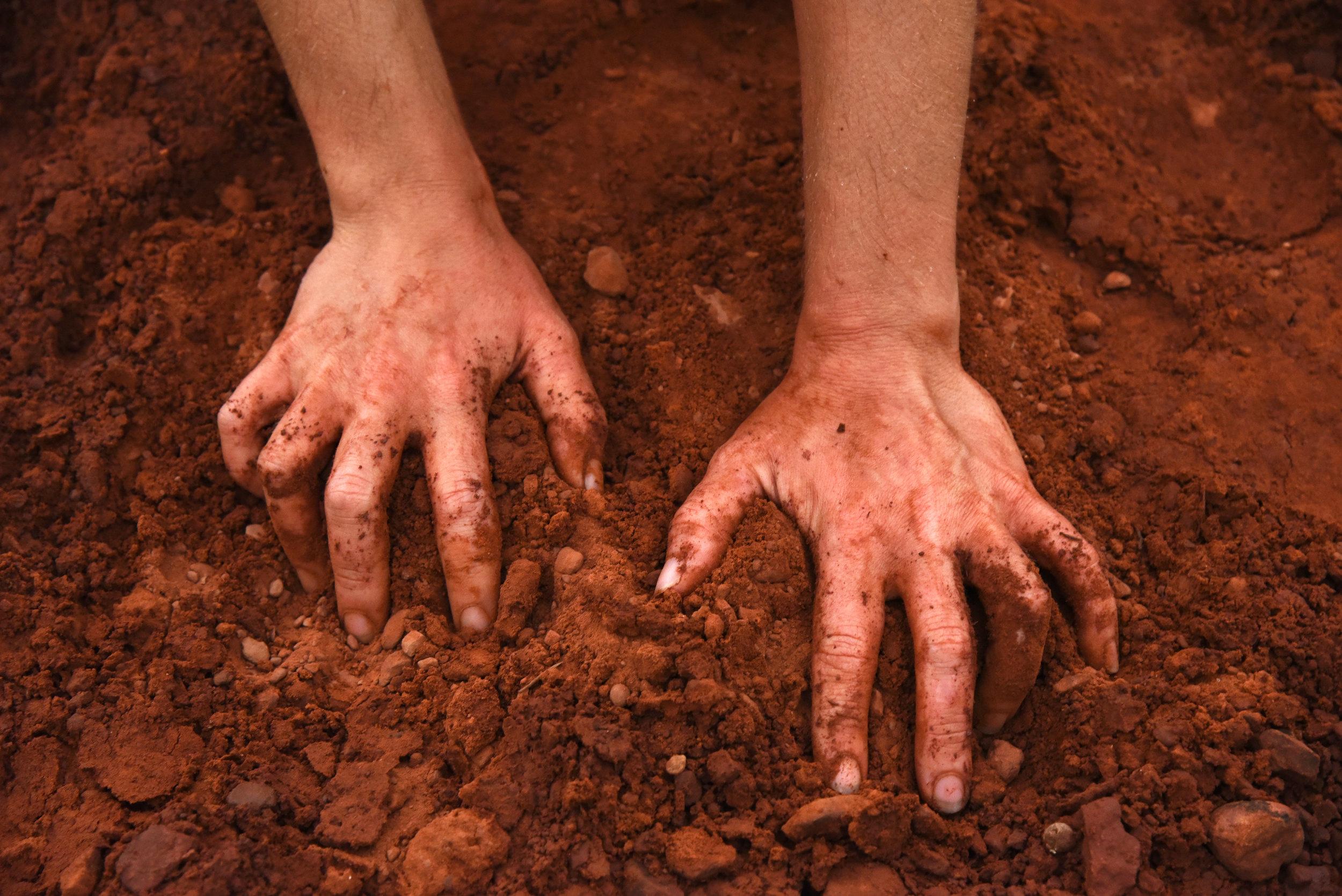 Figure 8 Hands.jpg