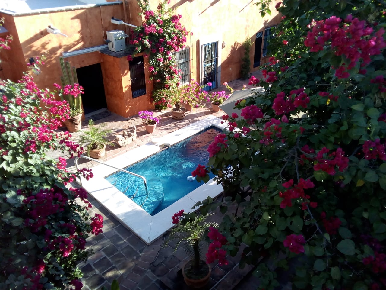 pool from roof.jpg