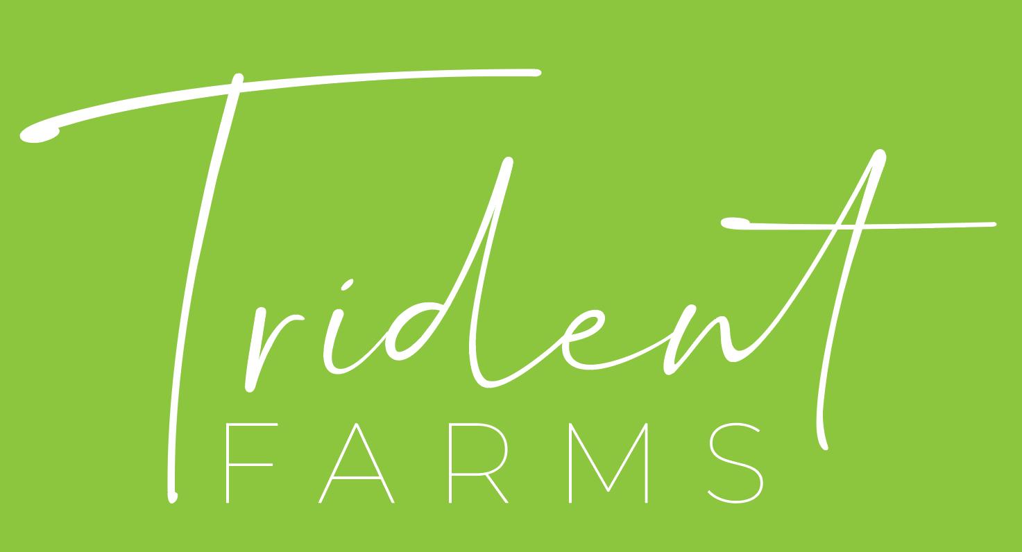Trident Farms - Logo Concept