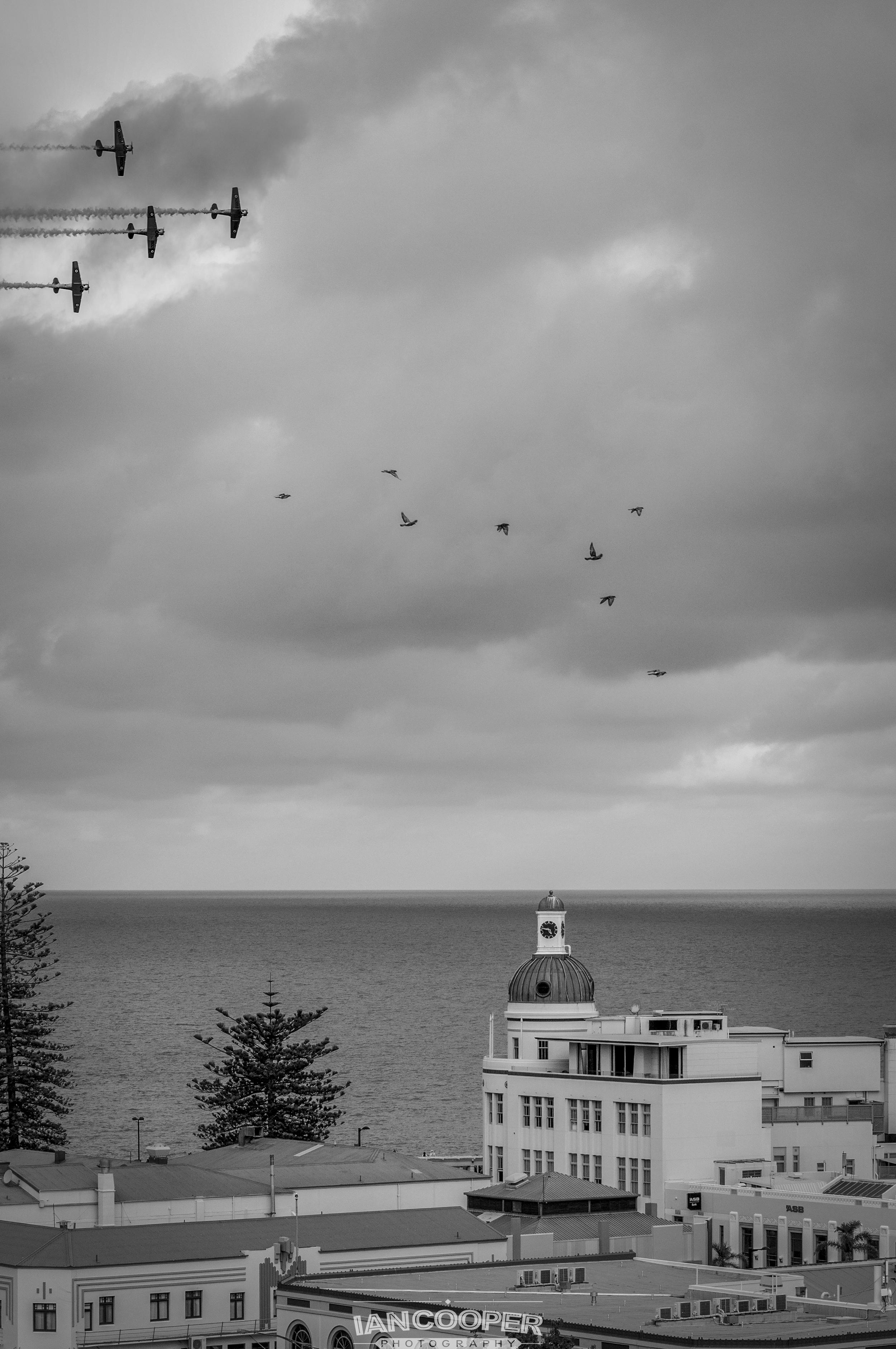 Warbirds over Napier