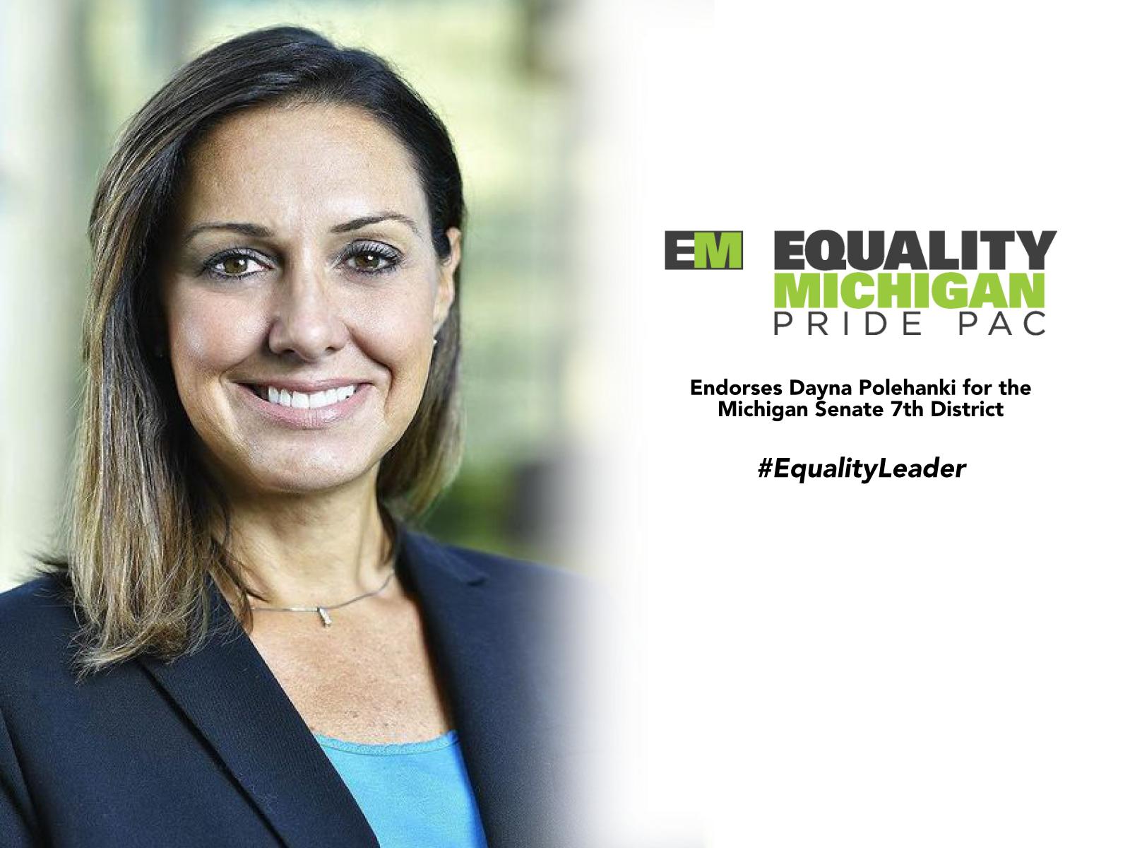Equality MI graphic_Dayna Polehenki.jpg