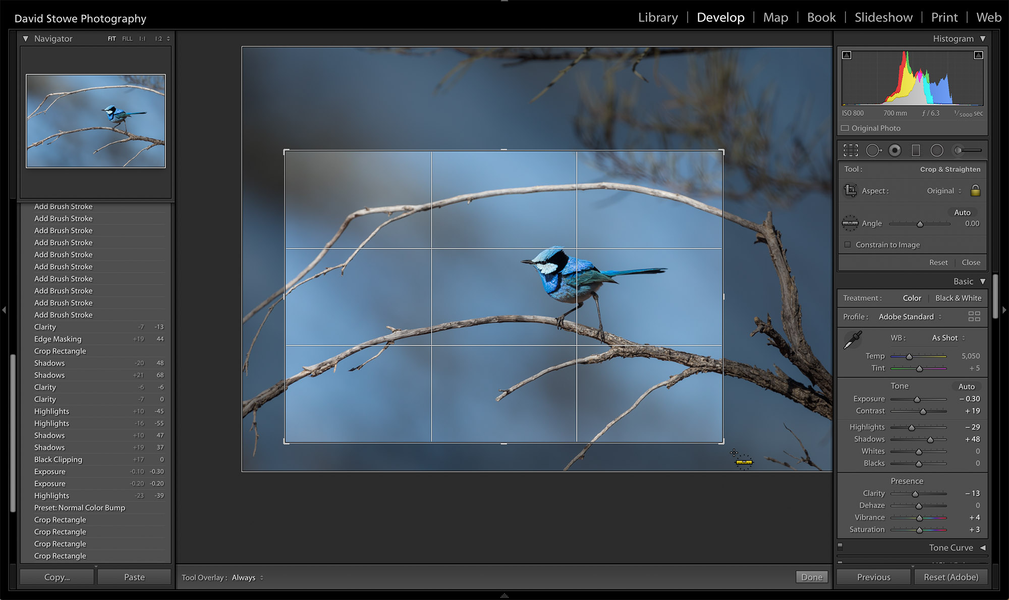 Workflow_Crop.jpg