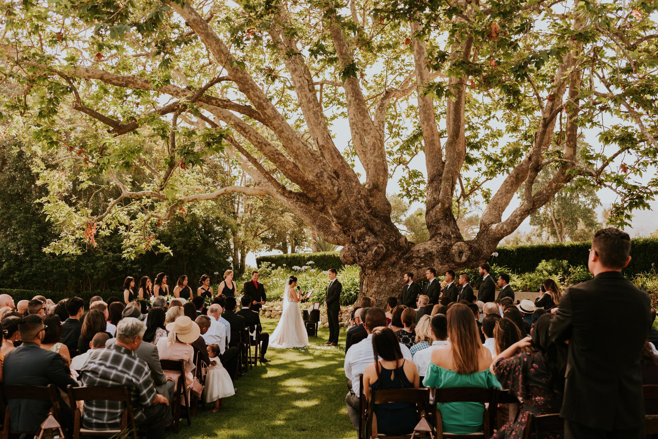 eryn-matt-adamson-house-wedding-ceremony-124.jpg