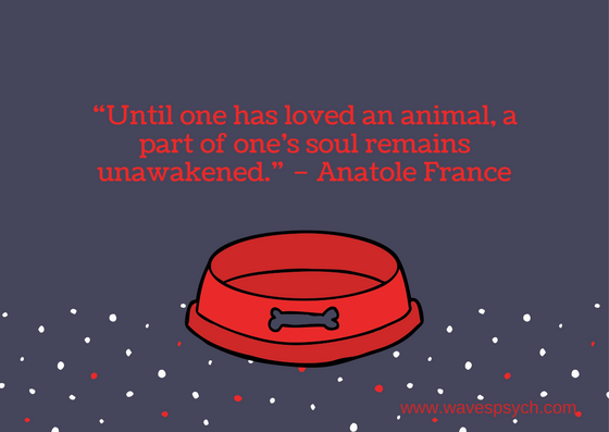 Red Dog Bowl Pet Sympathy Card.png
