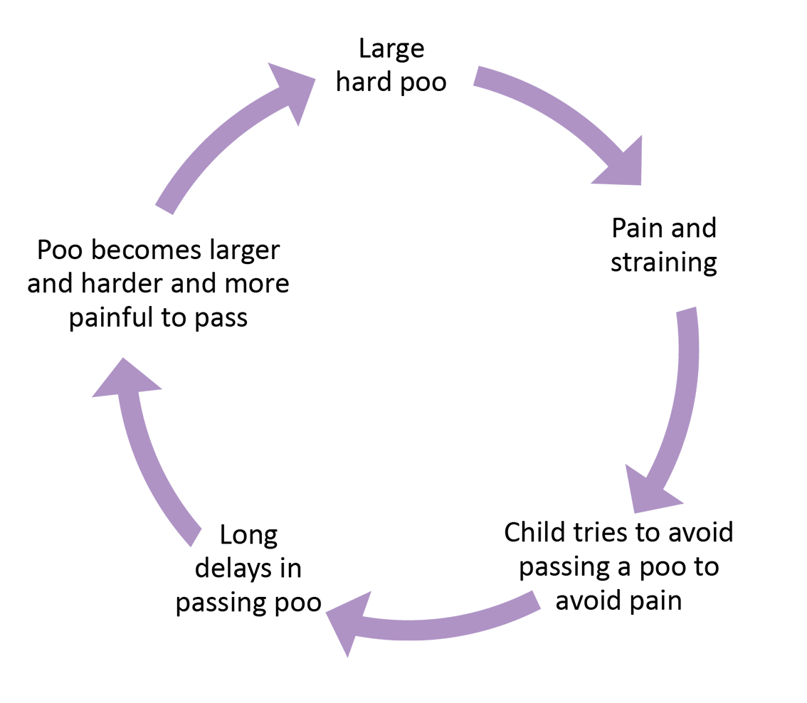 FD17260_Nasty_Cycle2.png