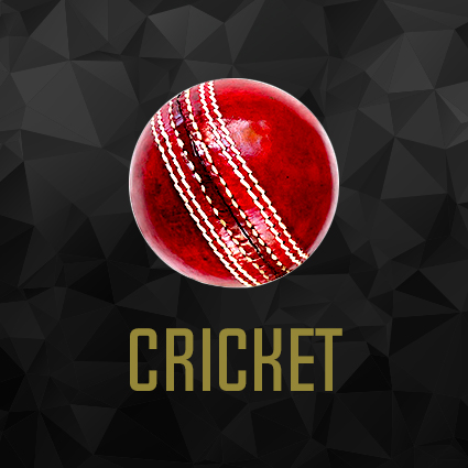 CRICKET FIX BUTTON.jpg