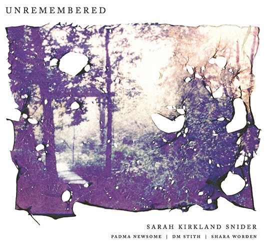 Unremembered, Sarah Kirkland Snider:   Here