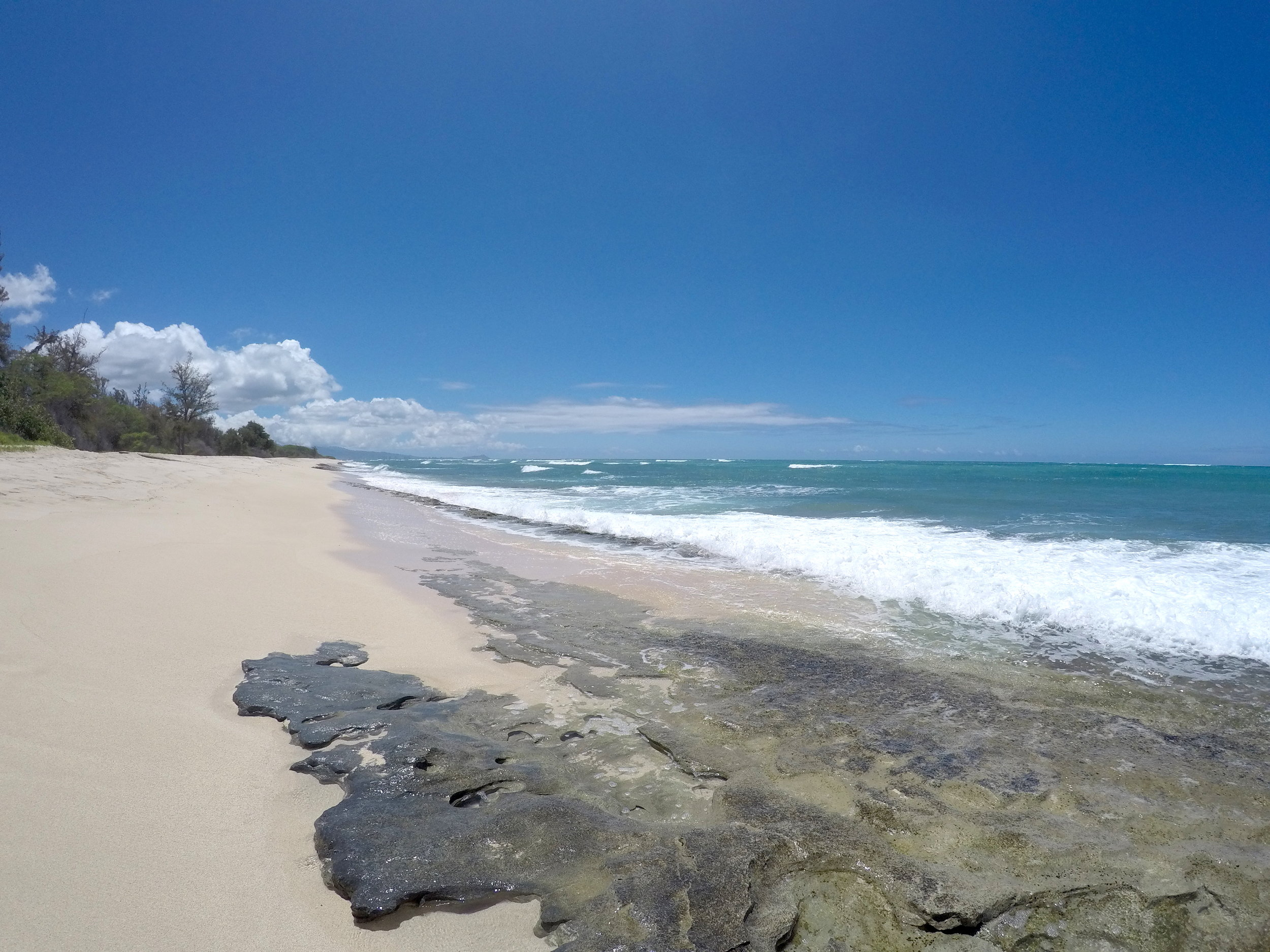 build your Hawaii Dream - Contact us