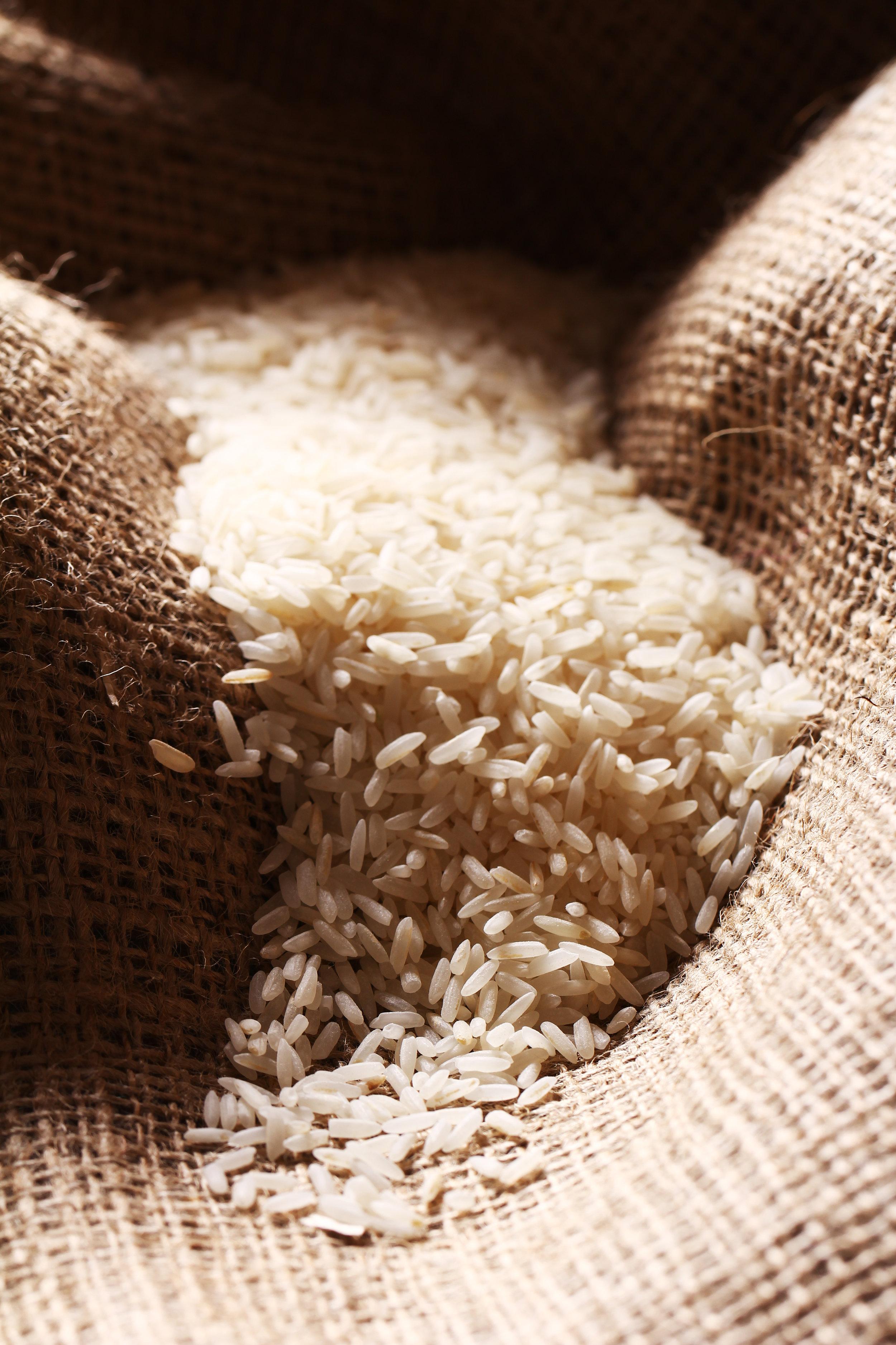 rice02.jpg