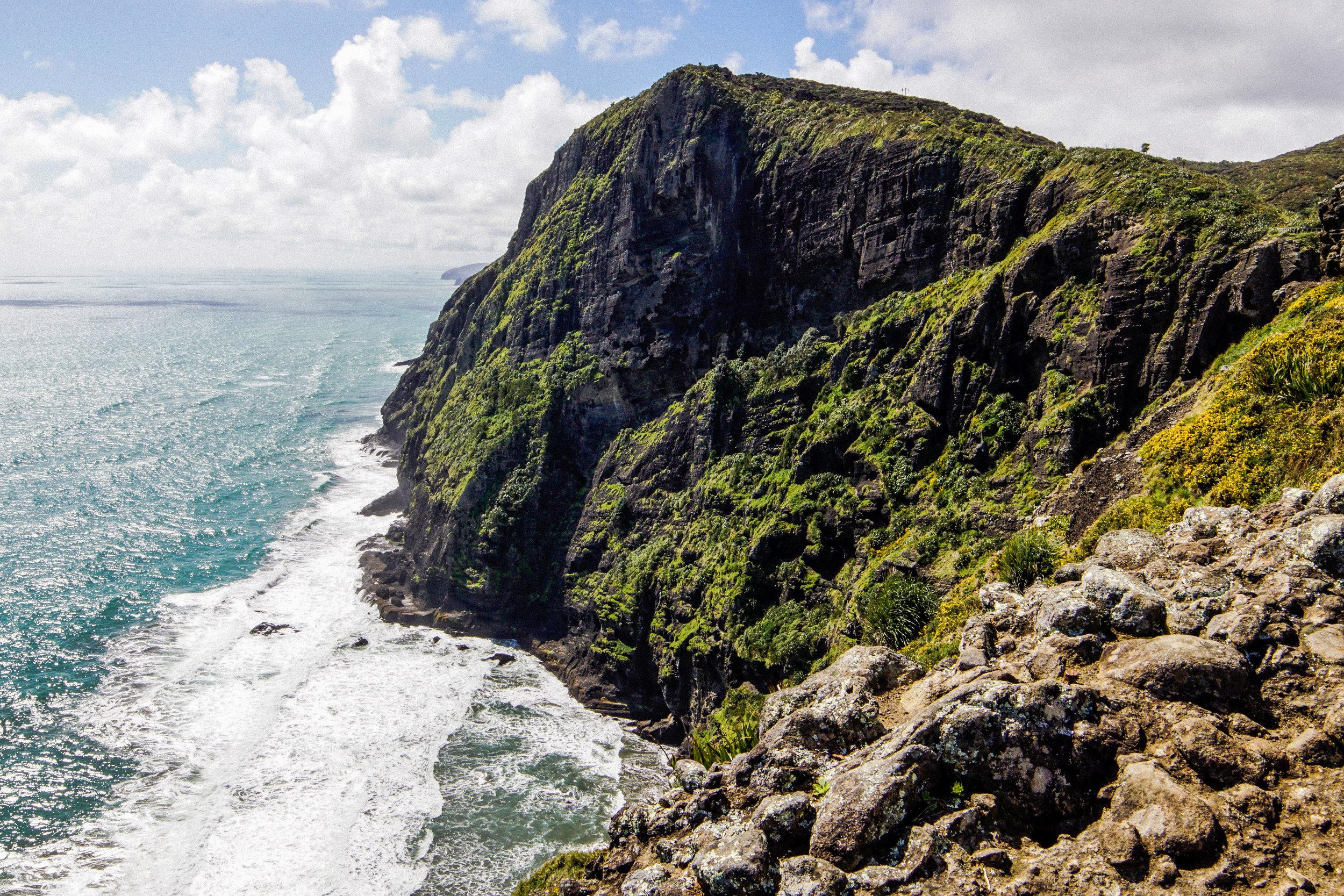 West Coast of Auckland, NZ