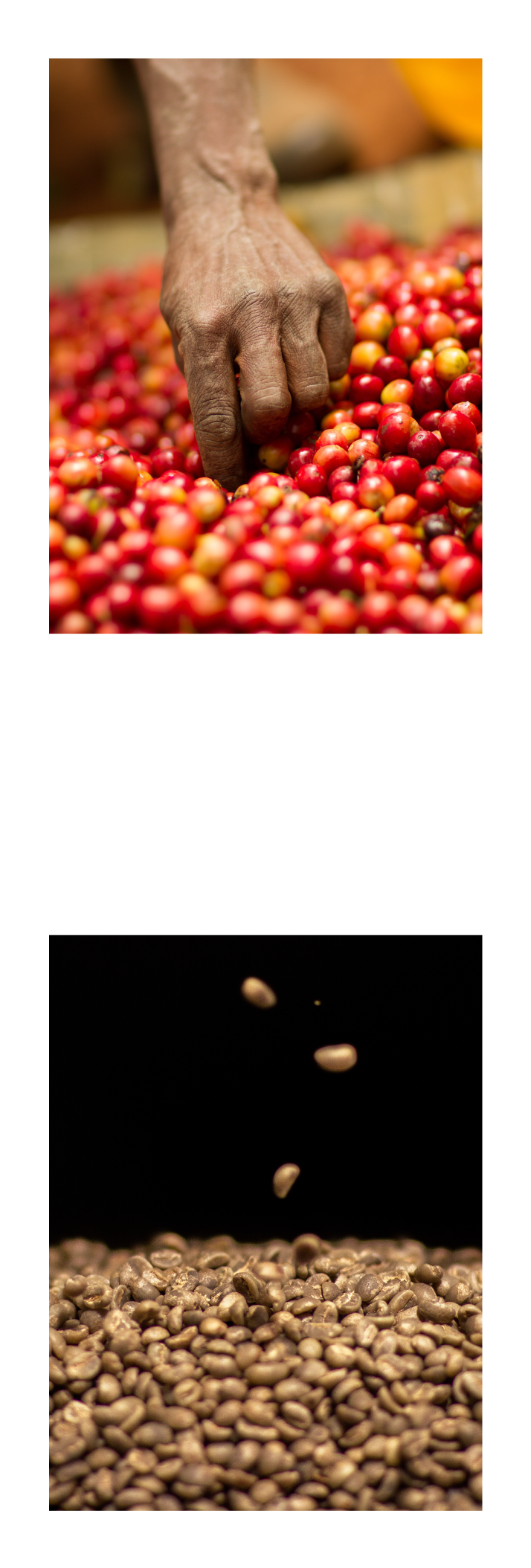 OUR STORY - Dormans was established in 1950 as Kenya's first coffee roastery. The founders, Charles and Ellen Dorman wanted to bring the coffee drinking experience closer to home. Until then, coffee from the region had only been exported in its raw or green form. Sadly, Charles died a premature death in 1960 but Ellen carried on the business determined to fulfill his dream.In her quest to provide a delightful coffee drinking experience to every consumer, Ellen creatively developed unique coffee blend formulations to meet the varied taste profiles of the different market segments. It was this passion and commitment that earned her the nickname 'The grand old dame of coffee'. Many of her blend formulations remain popular to this day.In 1986 Jeremy Block, in partnership with a UK multinational, purchased the business from a retiring Ellen.Over the years, Dormans has pioneered many initiatives to spur local consumption and today, is the most trusted coffee brand in the East African market.MILESTONESYear 2002Dormans set up Africa's first Coffee Training School, Nairobi School of Coffee.Dormans has connected many of the graduates to their hospitality clients, thus contributing to the employment of thousands of youth. The NSoC certificate is well sought-after by employers seeking to recruit qualified Baristas at their restaurants and coffee shops.Year 2003Dormans pioneered the introduction of the Kenya National Barista Championships in Nairobi. The event has grown in popularity over the years.The event has helped enhance awareness of a Barista as a professional coffee maker.Winners compete at the World Barista Championships, an event organized by the Specialty Coffee Association of Europe and the Specialty Coffee Association of America.Year 2004Dormans opened its first Coffee shop - a chain of shops followed.Year 2005Dormans introduced 'Coffee on the Go' serving delightful coffee from a Mobile Coffee Cart, the first ever in the region.Year 2013Dormans sold the assets of th
