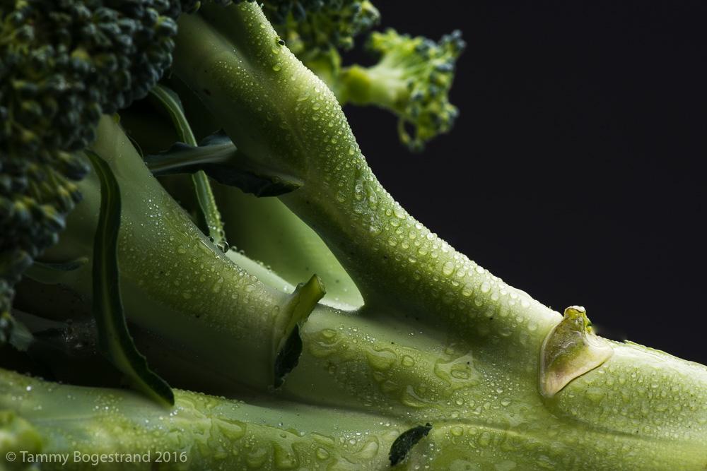 Broccoli-023.jpg