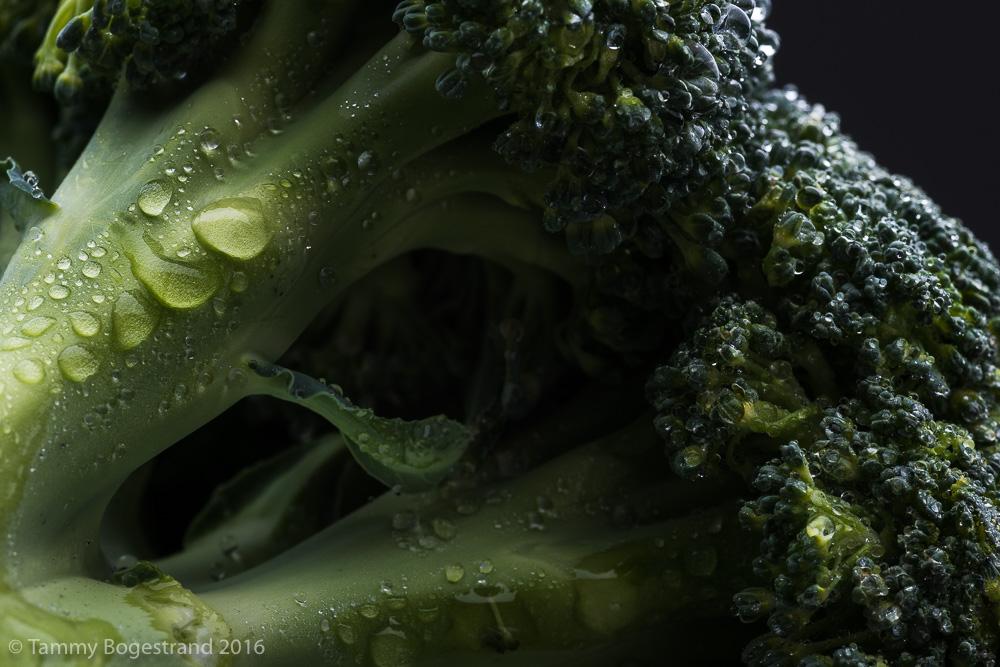 Broccoli-017-1.jpg