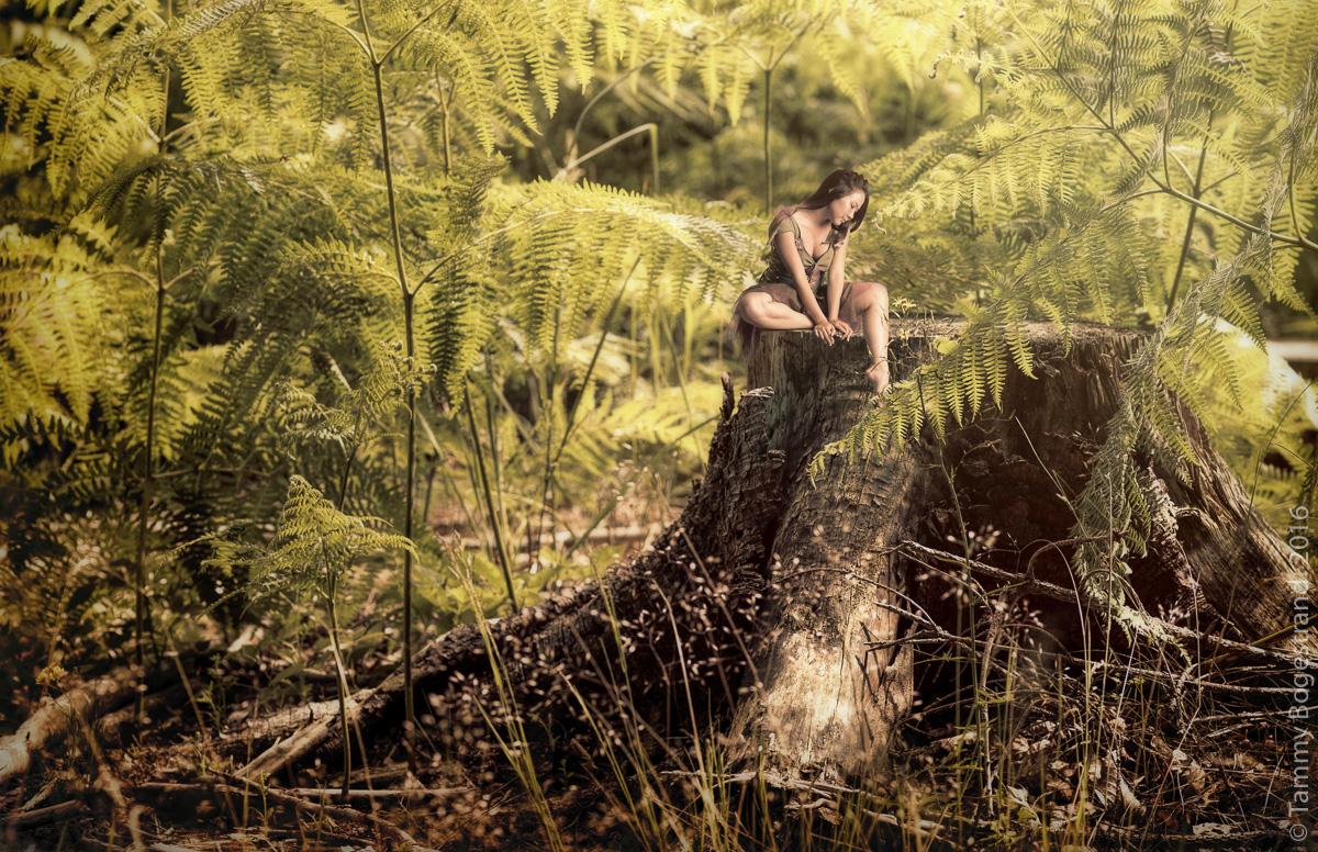 woodland-elf.jpg