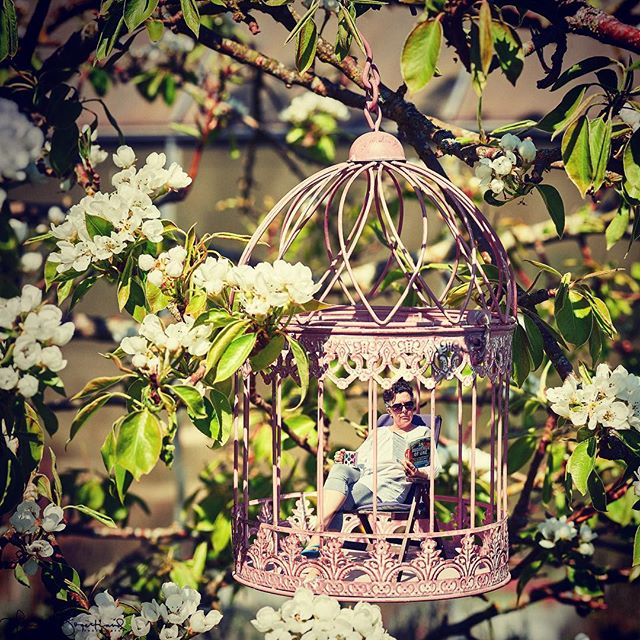 It's Friday!! *happy dance* Time to sit back with a good book and a cup of coffee! I found a nice quiet spot in our pear tree to read. 😊  The birdcage is from my sister-in-law, Maria. She knew I'd use it for a mini-me image! Thanks, Maria! 😊  I hope everyone has a pleasent weekend! Any amazing plans? Lots of relaxation? Are you creating anything? . . #minime #tabletopphotography #conceptualphotography #compositephotography #tinythings #digitalmanipulation #adobephotoshopcc #adobephotoshop #visualartist #anaudienceofone