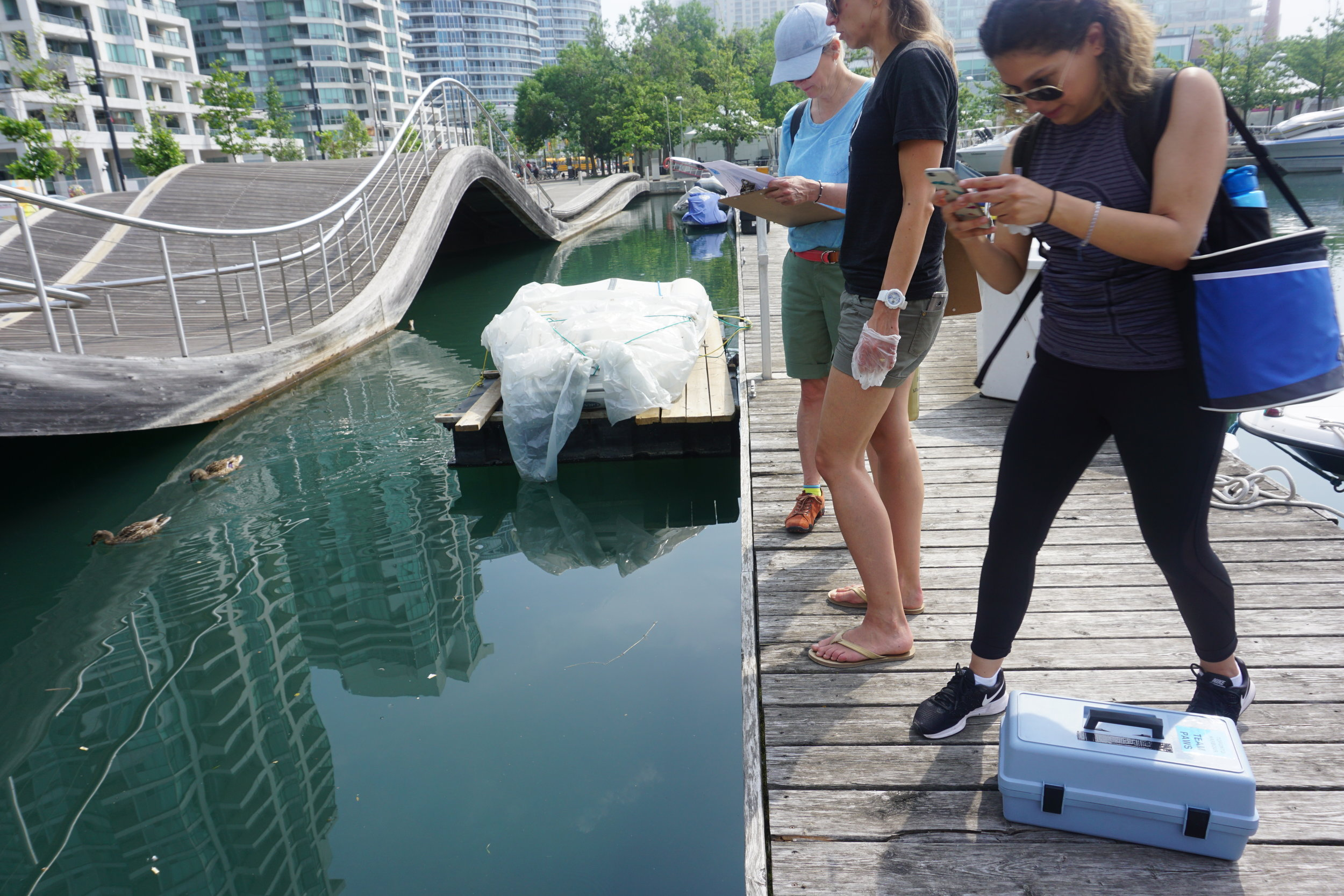 Volunteer Samplers - Toronto Harbour - August, 2017