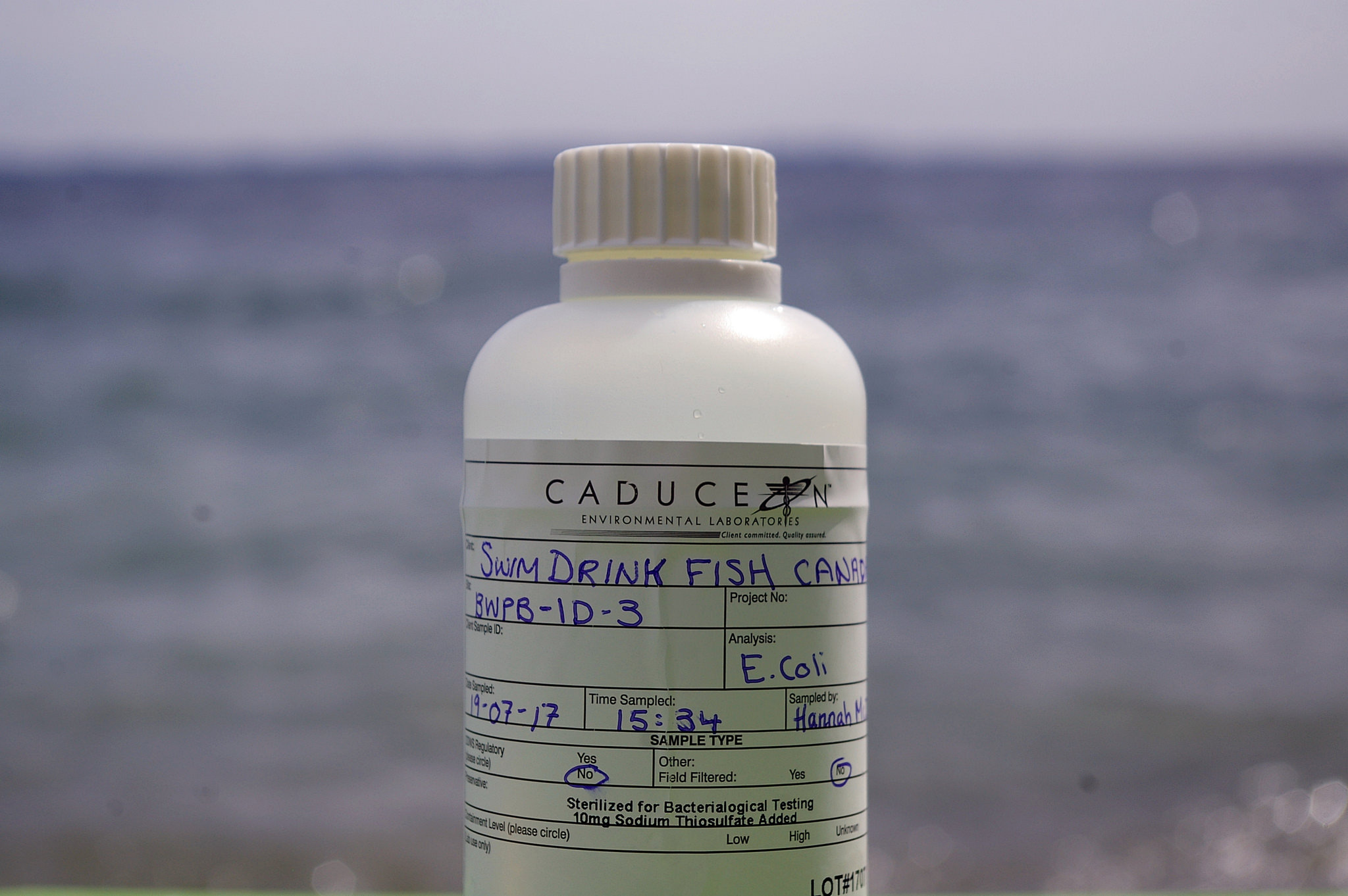 Example of a water sample taken this summer at Breakwater Park.