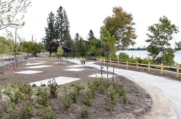 Pickering - Photo 6 - Plantings and pathway in progress.jpg