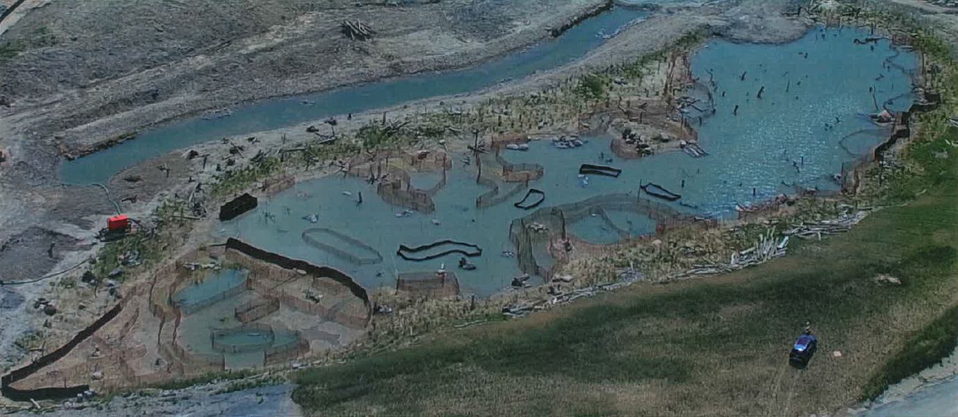 The West Family Swim Drink Fish Great Lakes Challenge - Waterfront Wetland Creation - Figure 7.png