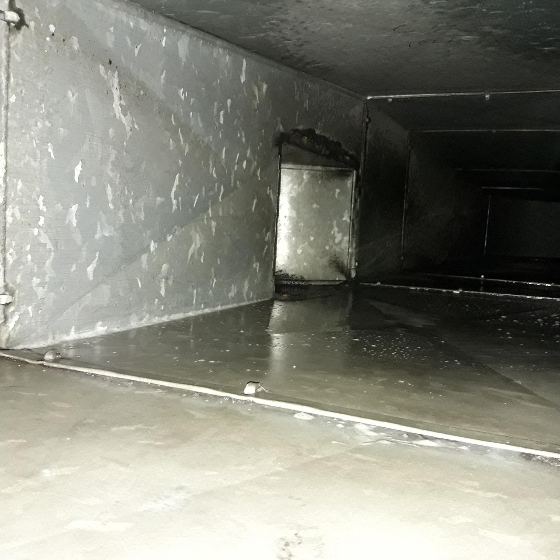 Conducto Limpio - De esta forma luce el interior del conducto después de realizar el proceso de higiene y desinfección.