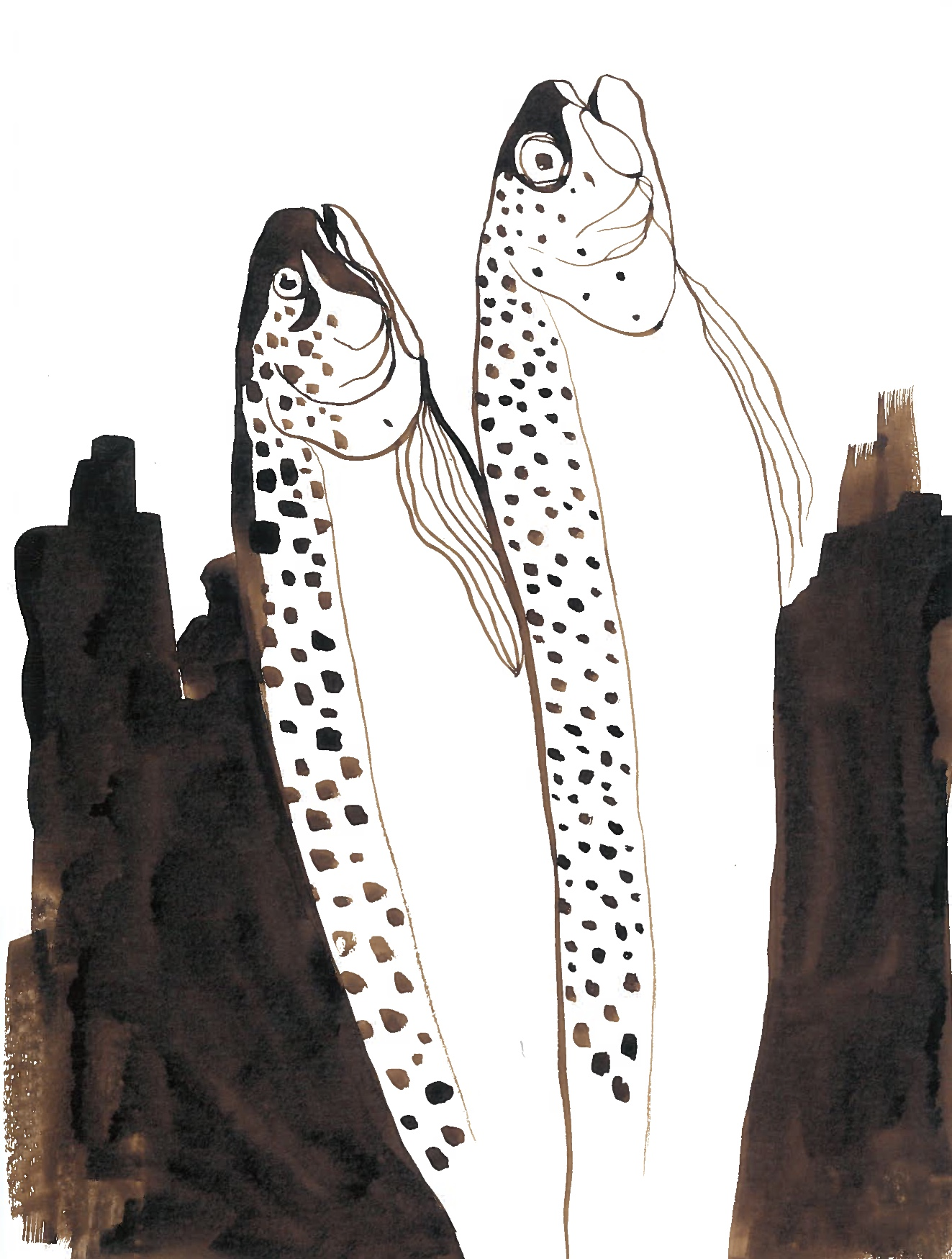 rapid dead fish ink painting - august, 2018