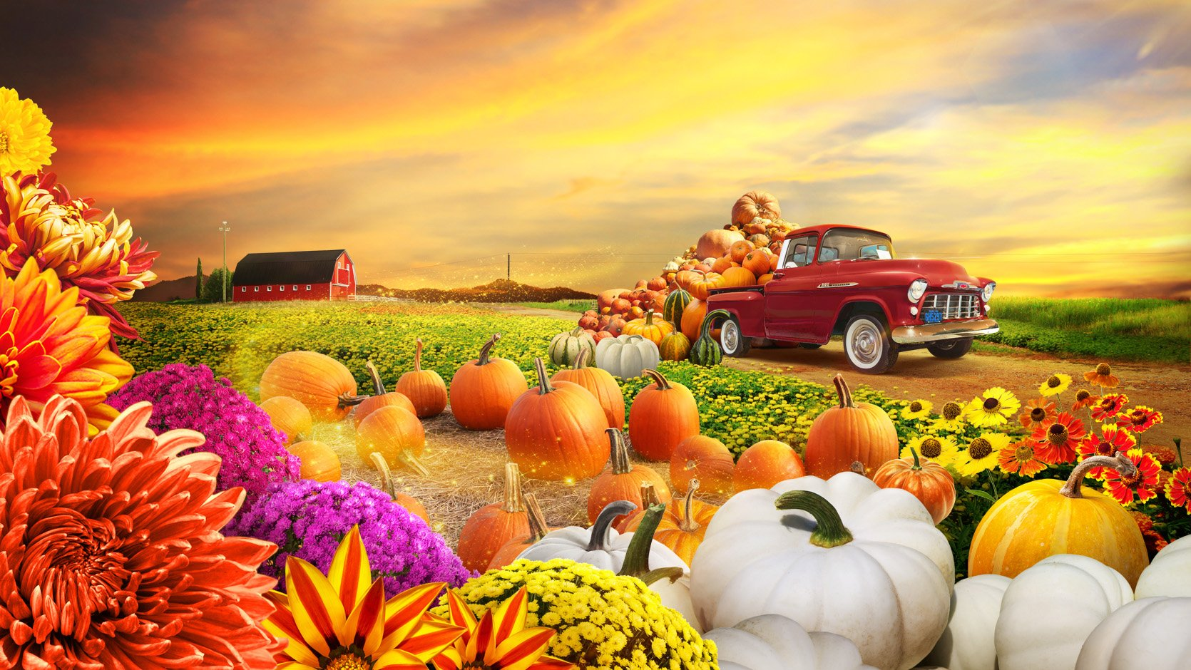Autumn Harvest floral display.jpg