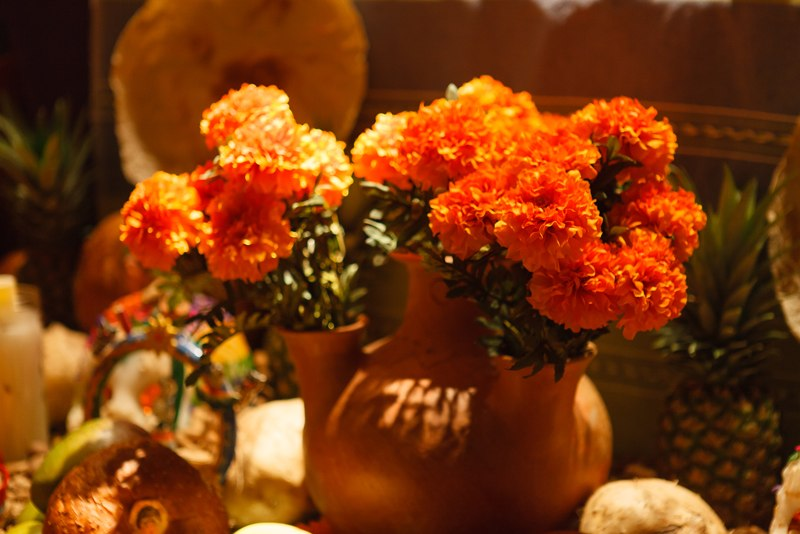 """Cempasuchitl-Marigold - known as """"The flower of the dead"""" blossoms in the valleys of Mexico during the months of October and November with a bright yellow color and is central to altar decorating. This flower aids the spirits to wander back."""
