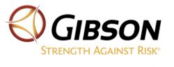 Bronze Sponsor -  Gibson