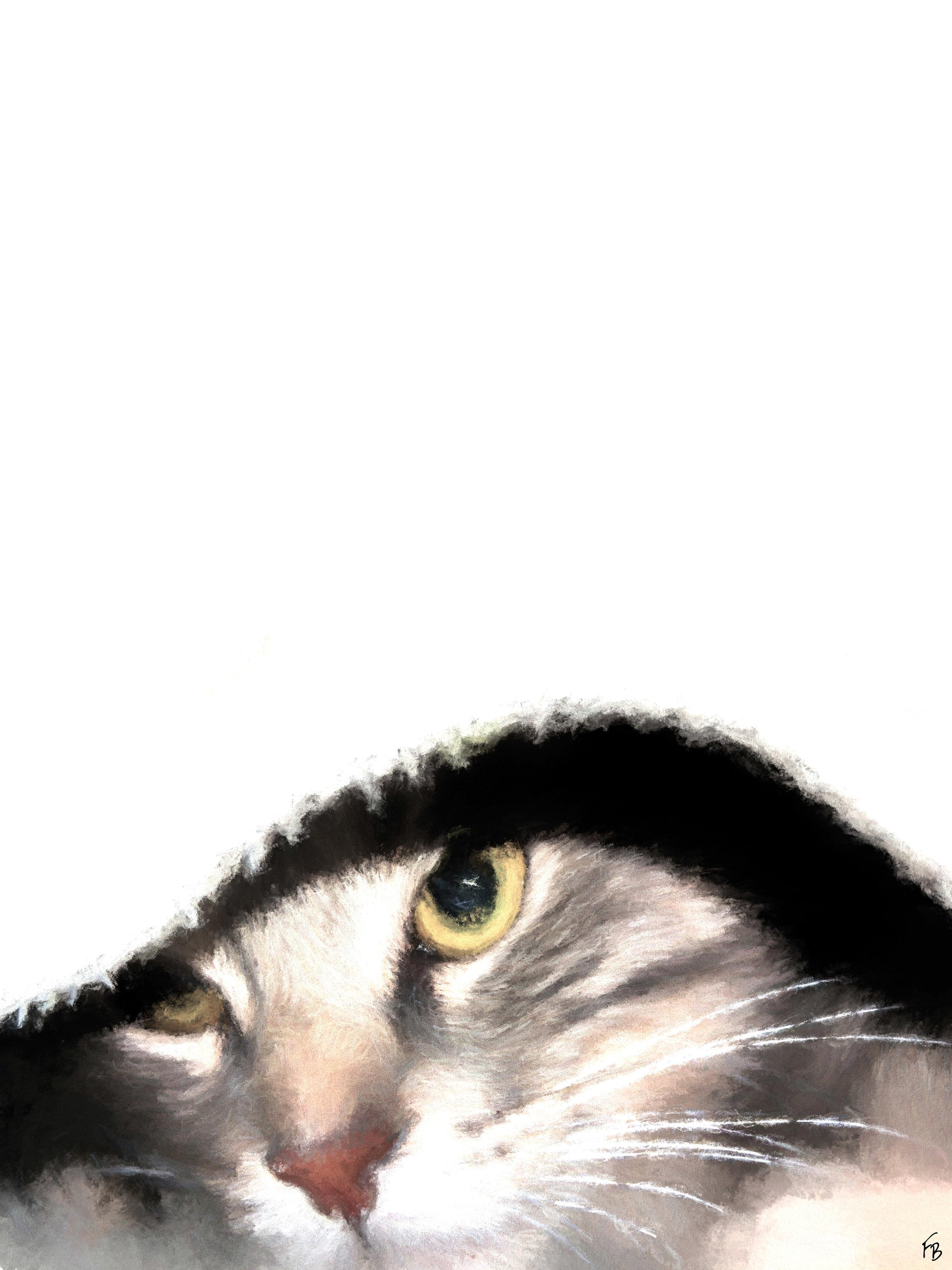Spritz undercover