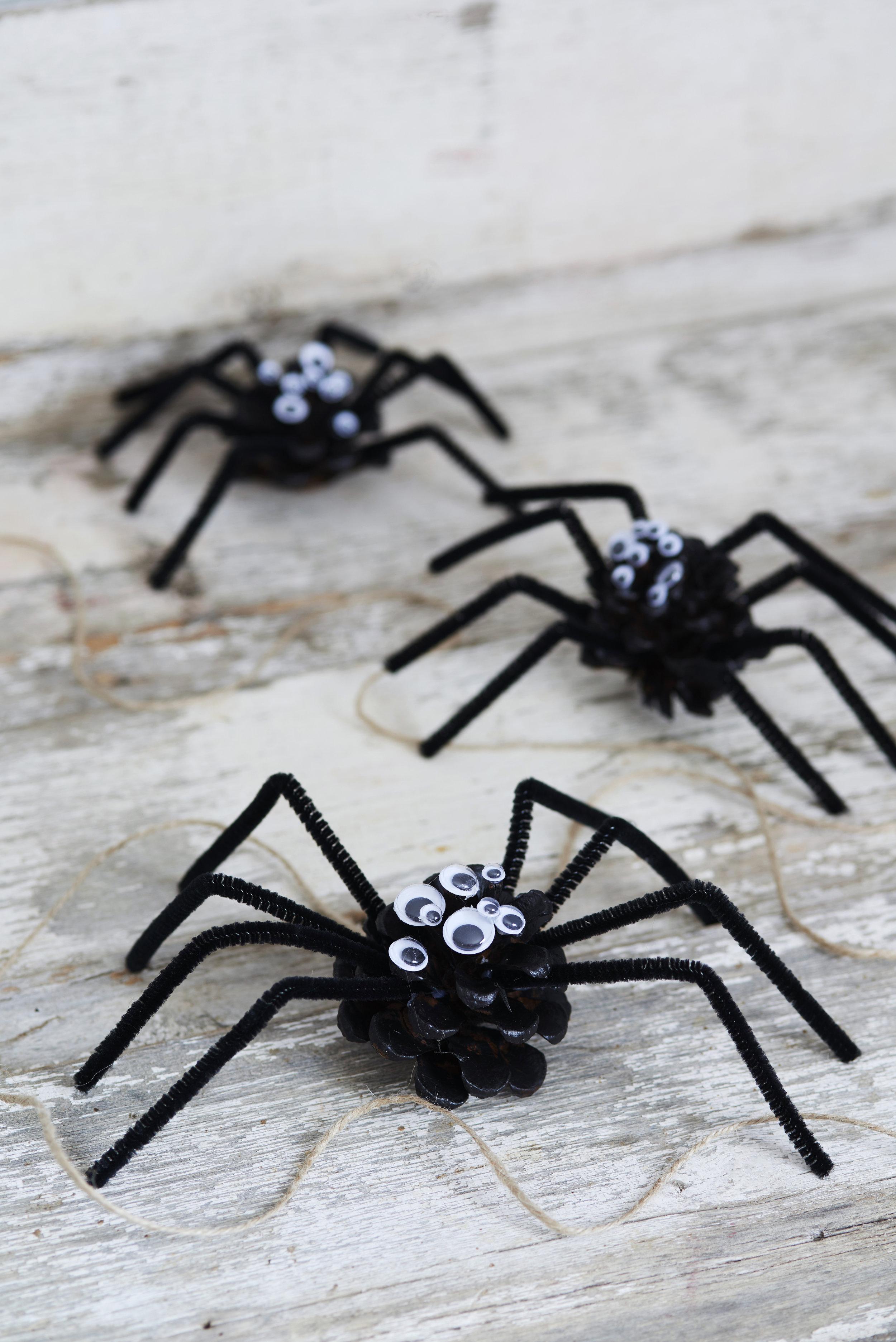 BB-spiderDIYmain-lr.jpg