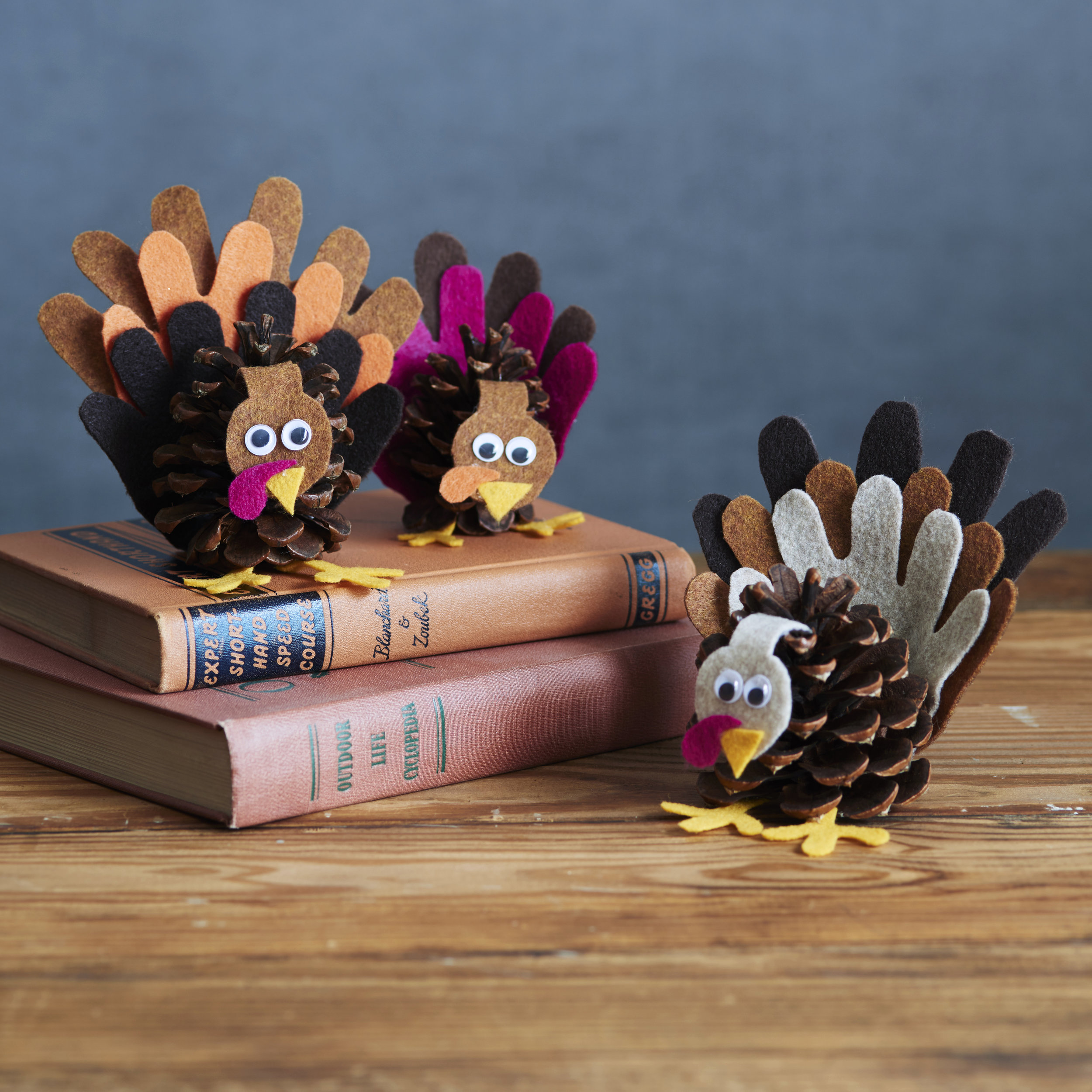 BB_Pinecone_Turkeys_009.jpg